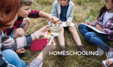 Todo sobre la Homeschooling, la escuela en casa