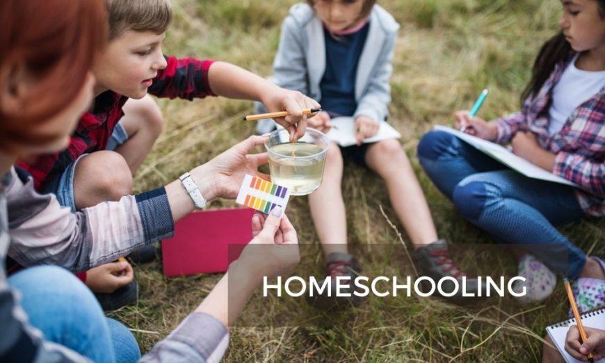 Homeschooling o escuela en casa