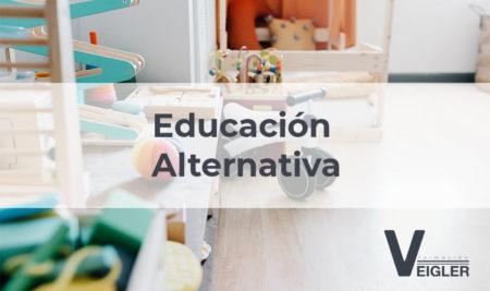 Educación alternativa: modelos pedagógicos que potencian el aprendizaje autónomo