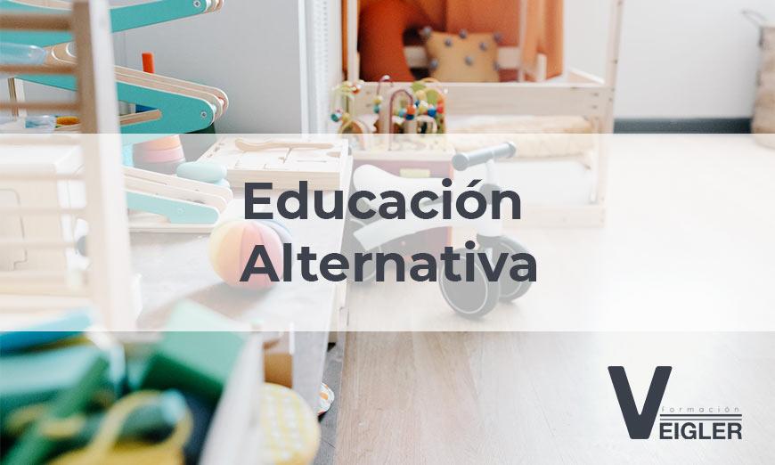 Repasamos 5 modelos pedagógicos de la educación alternativa