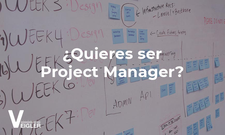 Una de las profesiones más demandadas de la actualidad es la del Project Manager